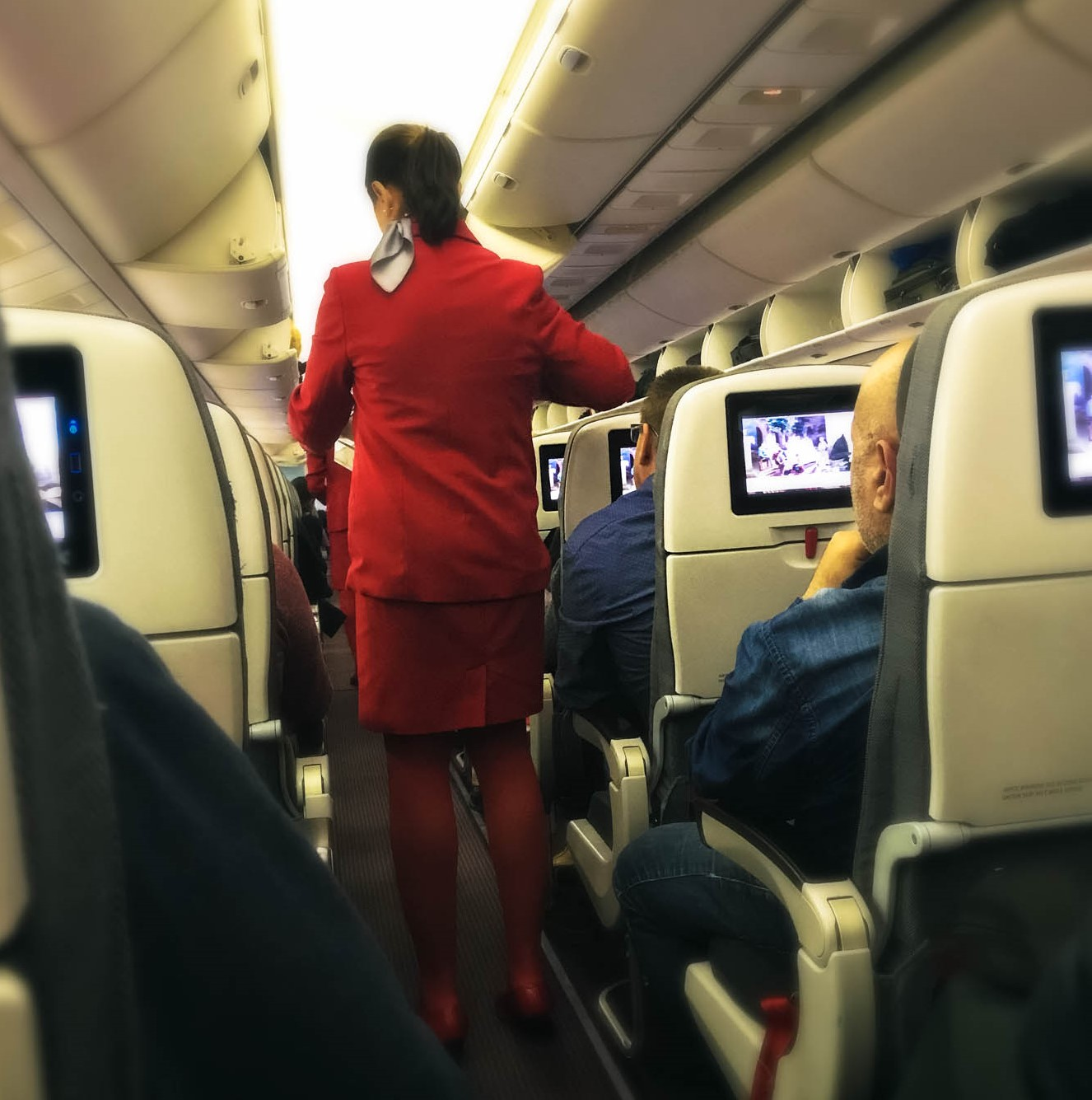 flight-attendant-austrian-air